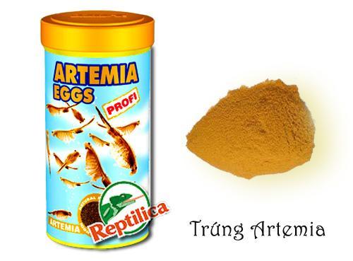 Trứng Artemia
